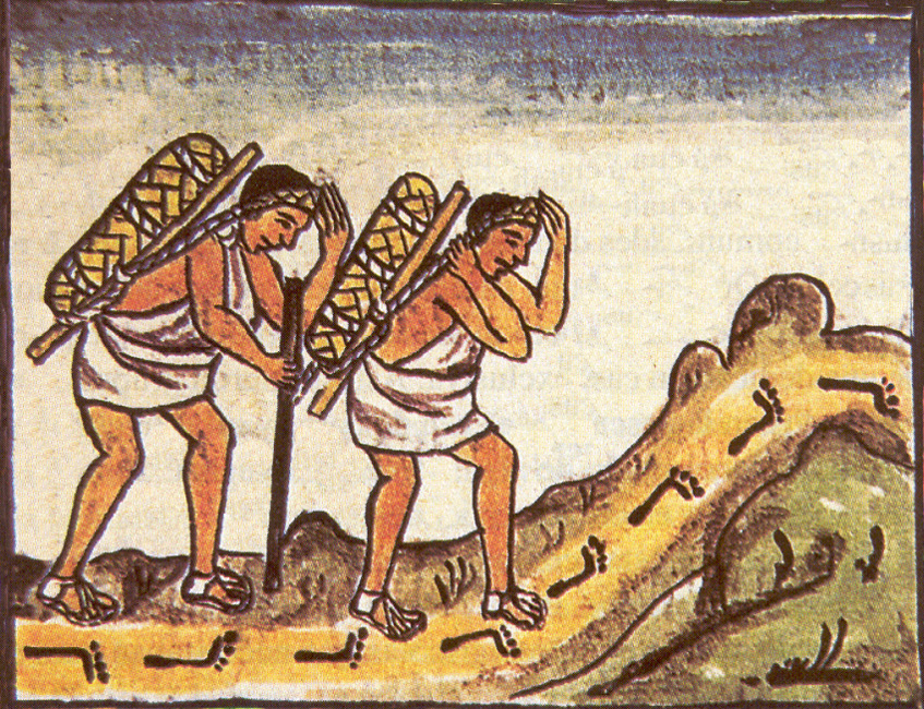 the uniquness of the aztec history economy environment and way of life The aztec economy can be divided into a  children learned history, myths, religion and aztec  aztec philosophy saw the arts as a way to express the true.