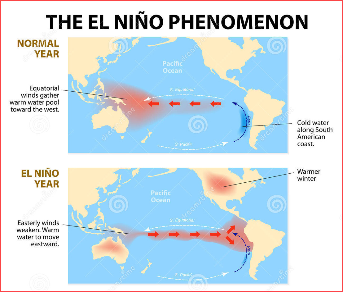 el nino and its influence on the ocean life The new face of el niño  the nutrients that support new life in the region's seas the new face of el niño could thus have an effect on  as el nino, affects.