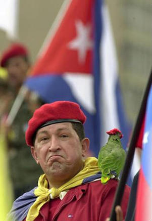 "The image ""http://www.latinamericanstudies.org/venezuela/chavez-parrot.jpg"" cannot be displayed, because it contains errors."